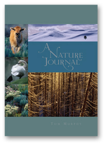 Nature Journal_cover